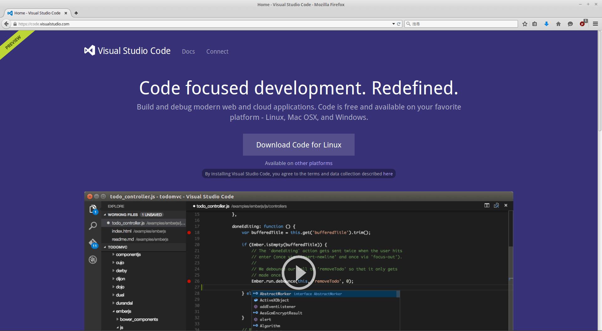 MicrosoftVisualStudioCodePreviewWebsite2