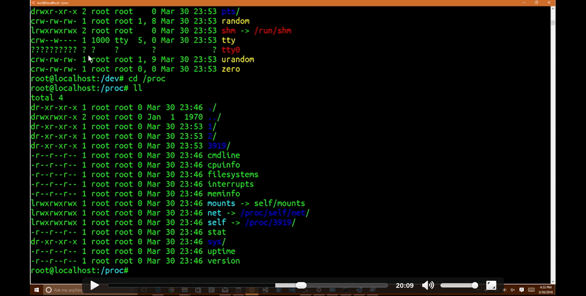 screenshot-from-Linux Command Line on Windows-video-demo-fs-dev-proc