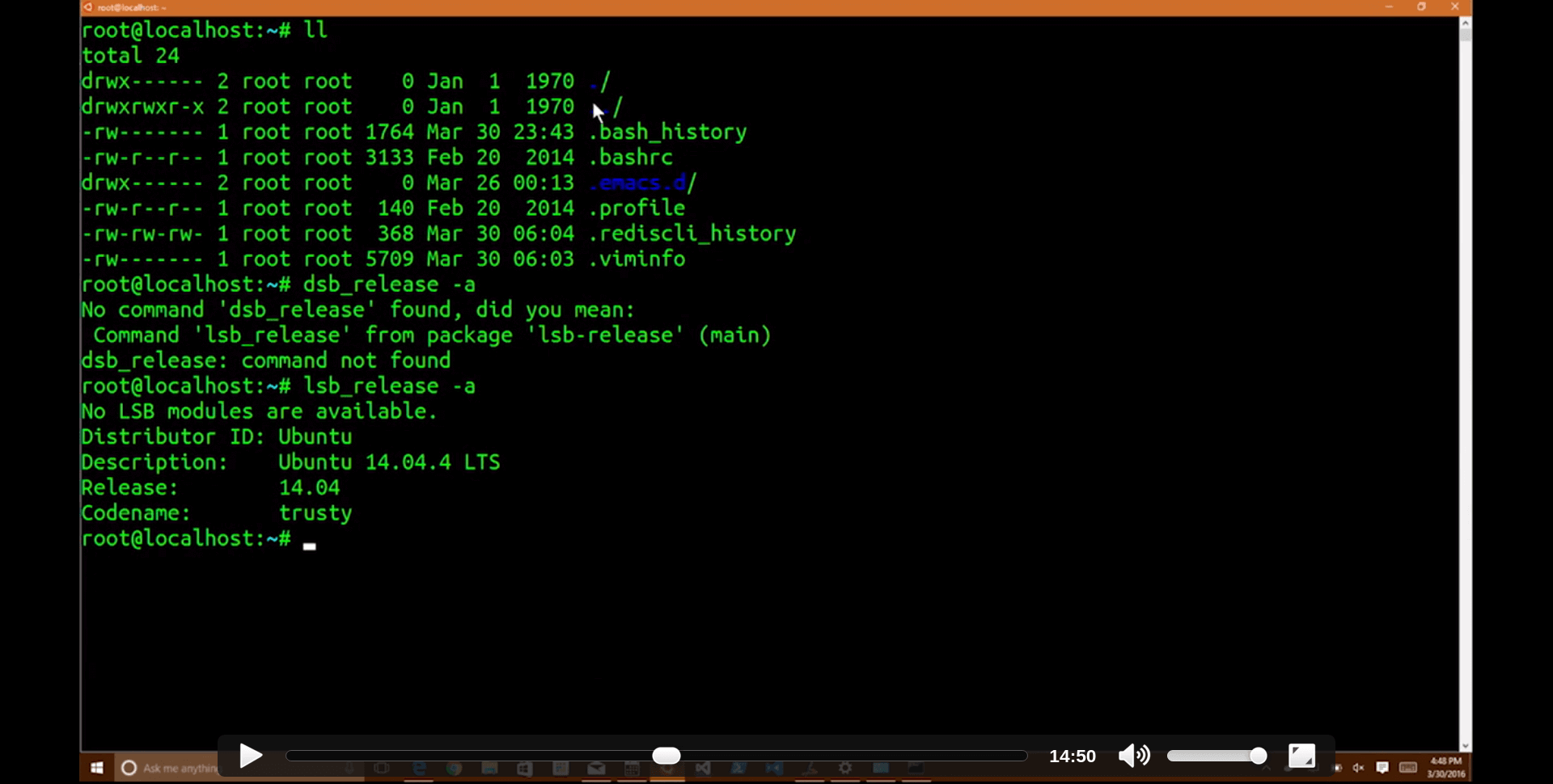 screenshot-from-Linux Command Line on Windows-video-ll-lsb_release-a.png